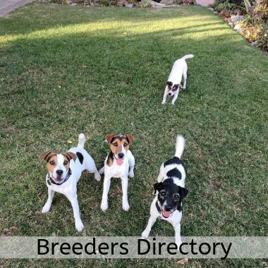 SCJRT_Breeders Directory